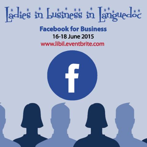 Facebook for Business workshops Languedoc