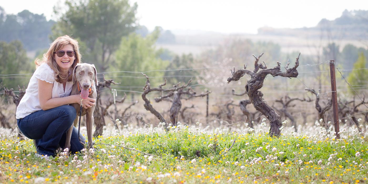 Annette with her Weimaraner in Languedoc vineyard